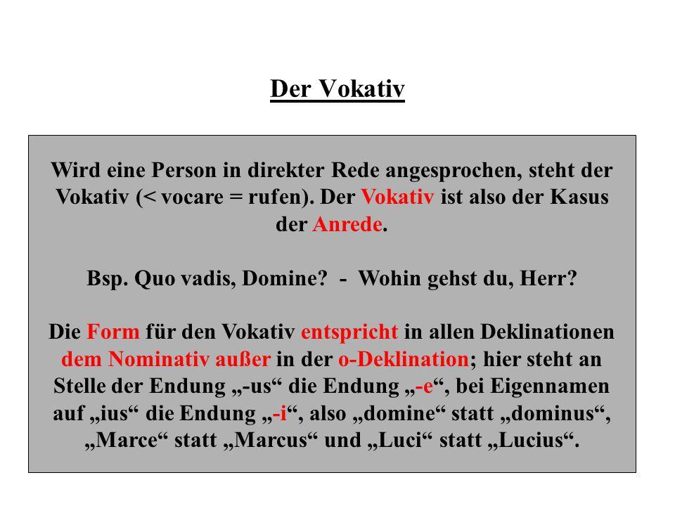 Formen des Vokativs o-Deklination Domin-eVokativ SingularHerr.