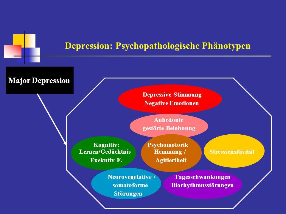 Zufallsentdeckung antidepressiver Wirkprinzipien Wirkung eines PharmakonsVerständnis/Konzeptualisierung einer psychischen Störung Entwicklung differenziellerdifferenzierte neurobiologische pharmakologischer WirkprinzipienUntersuchungsebenen Imipramin