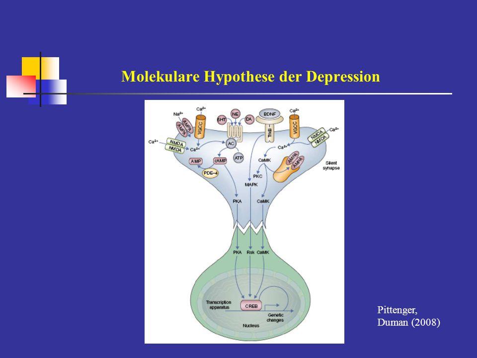 Neuroendokrine Hypothese der Depression [nach: Yehuda 2001 Holsboer, Ising 2010] Dysfunktion der HPA-Achse  grundlegende biologische Mobilisierung  mit Noradrenalin synergistisch bei emotionaler Gedächtnisbildung, aber  hemmend auf Wiedererinnerung  reguliert und beendet Stress-Kaskade - erhöhtes ACTH und Cortisol - mangelnde Suppression nach Dexamethason - erhöhtes ACTH + Cortisol im DEX/CRH-Test - erhöhte CRH- + Vasopressin = - Subsensitivität des Kortikosteroid-Rezeptors - Cortisol bindet an MR und GR: Transkriptionsfaktoren: Kodierung von Neuropeptiden + Wachstumsfaktorn reguliert