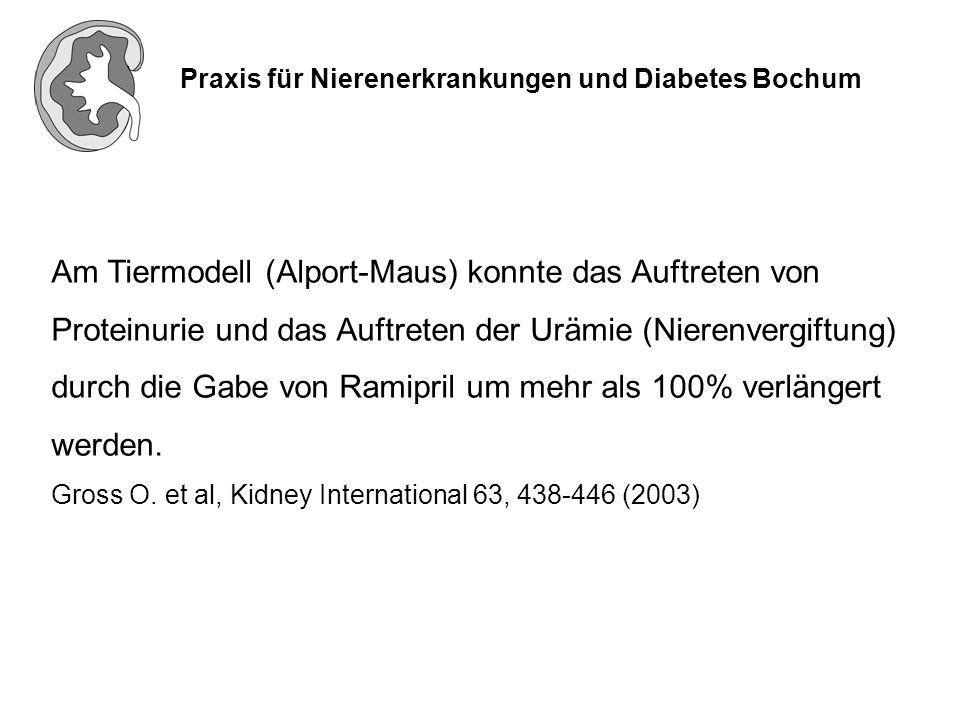 Praxis für Nierenerkrankungen und Diabetes Bochum Europäische Alport-Studie (Verlaufsbeobachtung) Bei Kindern im Grundschulalter mit gesichertem Alport Syndrom soll durch die frühzeitige Gabe von Ramipril (möglichst vor dem Auftreten einer Proteinurie) das Nierenversagens verzögert werden.
