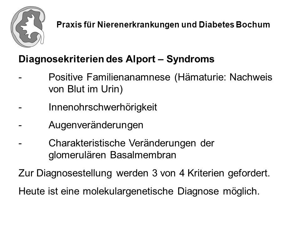 Praxis für Nierenerkrankungen und Diabetes Bochum Lage der Nieren