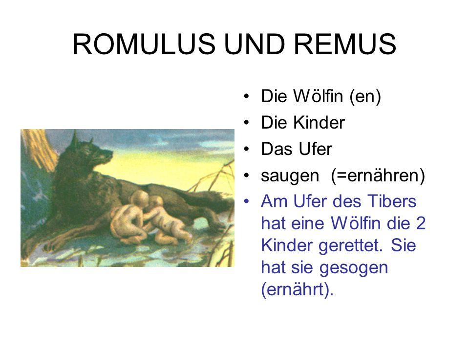 ROMULUS UND REMUS Das Pferd (e ) Die Grenze (n) Die Mauer (n) überspringen (a, u) Der Streit (e) Remus ist auf einem Pferd.
