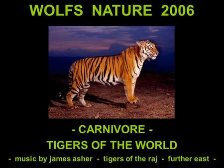 WOLFS NATURE 2006 - CARNIVORE - TIGERS OF THE WORLD - music by james asher - tigers of the raj - further east -