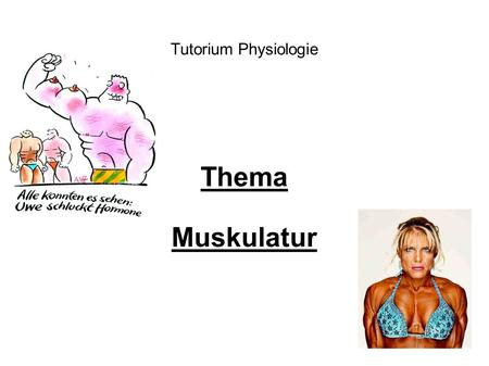 Tutorium Physiologie Thema Muskulatur.