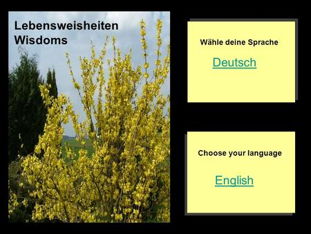 English Deutsch Choose your language Wähle deine Sprache Lebensweisheiten Wisdoms.