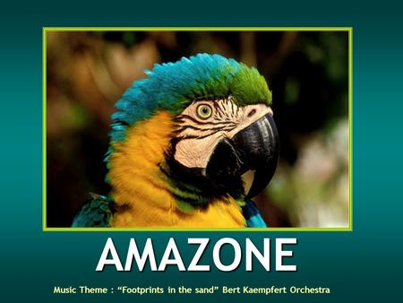 AMAZONE Music Theme : Footprints in the sand Bert Kaempfert Orchestra.