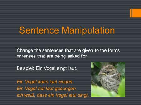 Sentence Manipulation Change the sentences that are given to the forms or tenses that are being asked for. Beispiel: Ein Vogel singt laut. Ein Vogel kann.