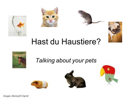 Hast du Haustiere? Talking about your pets Images: Microsoft Clip Art.