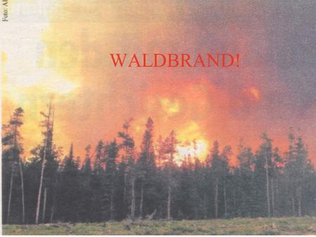 WALDBRAND!. JANUAR-- FEBRUAR1 MÄRZ18 APRIL91 MAI19 JUNI24 JULI14 AUGUST8 SEPTEMBER1 OKTOBER3 NOVEMBER-- DEZEMBER--