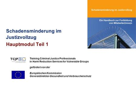 Schadensminderung im Justizvollzug Hauptmodul Teil 1 Training Criminal Justice Professionals in Harm Reduction Services for Vulnerable Groups gefördert.