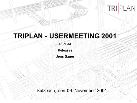 1 TRIPLAN - USERMEETING 2001 PIPE-M Releases Jens Sauer Sulzbach, den 06. November 2001.