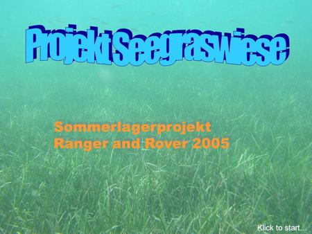 Sommerlagerprojekt Ranger and Rover 2005 Sommerlagerprojekt Ranger and Rover 2005 Klick to start…