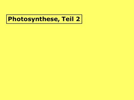 Photosynthese, Teil 2.