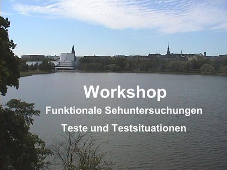 Workshop Funktionale Sehuntersuchungen Teste und Testsituationen.