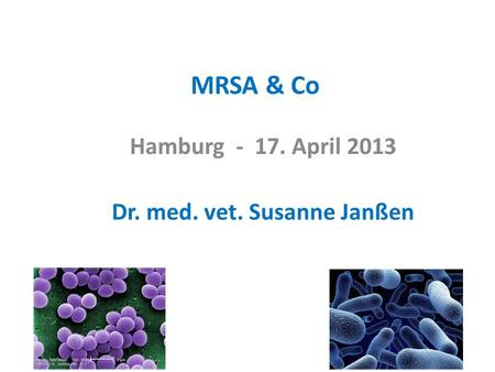 MRSA & Co Hamburg - 17. April 2013 Dr. med. vet. Susanne Janßen.