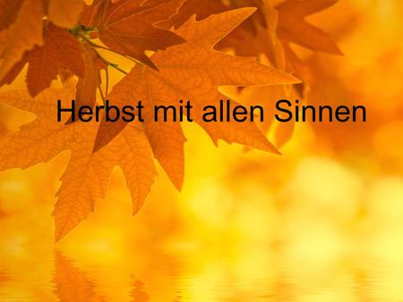 Herbst mit allen Sinnen. September Oktober November.