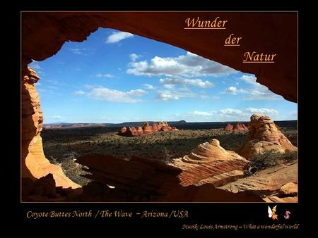 Wunder der Natur Coyote Buttes North / The Wave ~ Arizona /USA