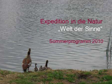 Expedition in die Natur Welt der Sinne Sommerprogramm 2010.