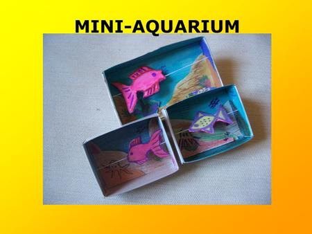 MINI-AQUARIUM.