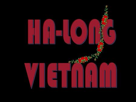 HA-LONG VIETNAM.