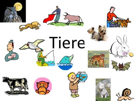 Tiere.