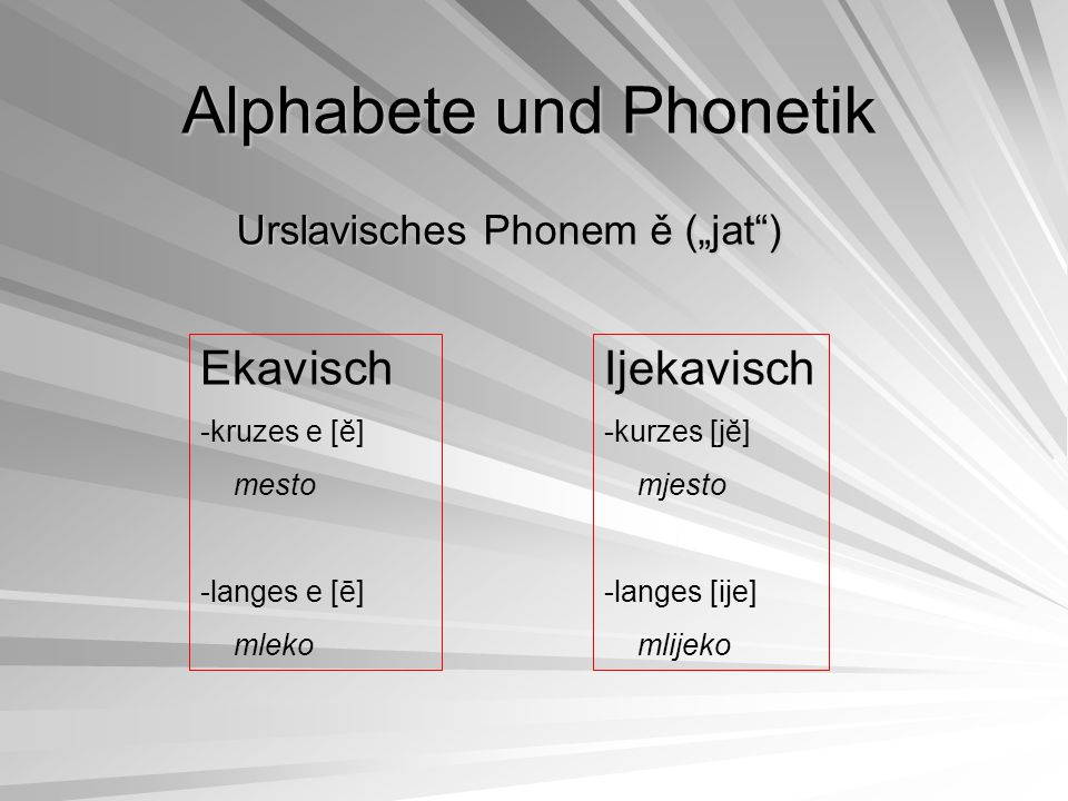 Die Morphologie Nominale Flexionskategorien –Genus (m.