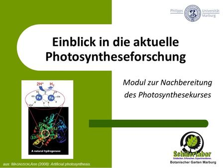 Einblick in die aktuelle Photosyntheseforschung Modul zur Nachbereitung des Photosynthesekurses aus: M AGNUSON,Ann (2008): Artificial photosynthesis.