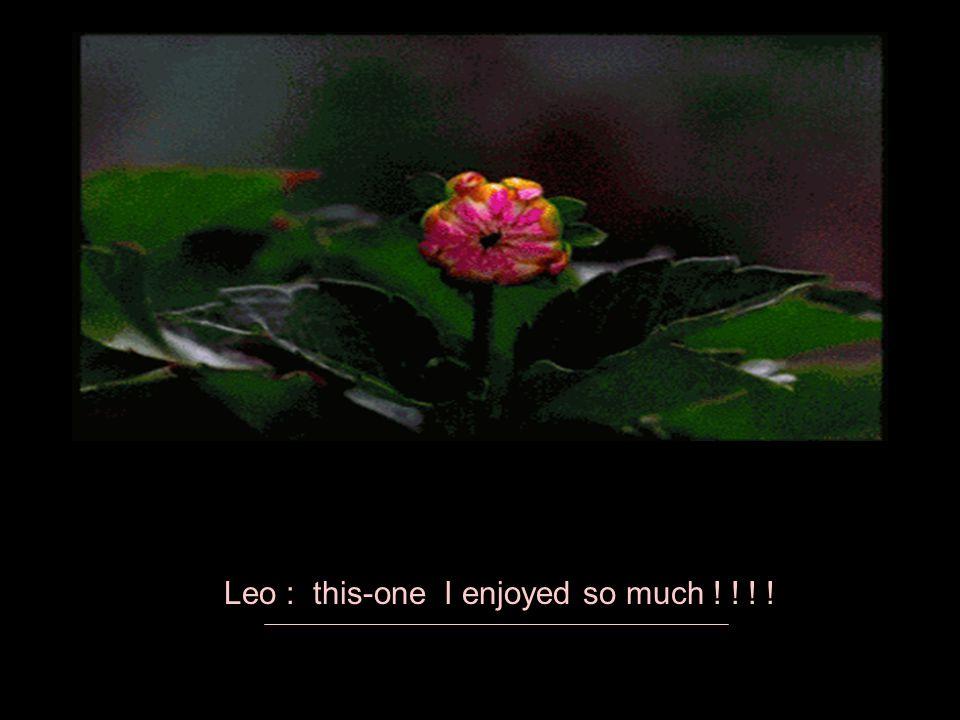 Leo : this-one I enjoyed so much ! ! ! !