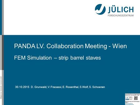 Mitglied der Helmholtz-Gemeinschaft PANDA LV. Collaboration Meeting - Wien FEM Simulation – strip barrel staves 30.10.2015 D. Grunwald, V. Fracassi, E.