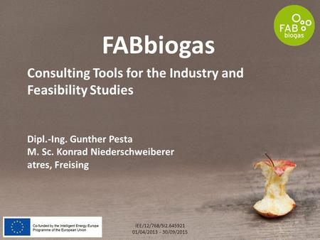 Consulting Tools for the Industry and Feasibility Studies Dipl.-Ing. Gunther Pesta M. Sc. Konrad Niederschweiberer atres, Freising FABbiogas IEE/12/768/SI2.645921.