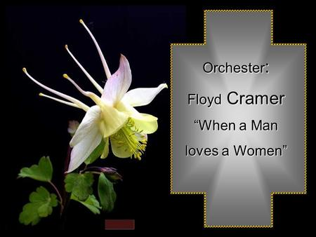 "Orchester : Floyd Floyd Cramer ""When a Man loves a Women"""