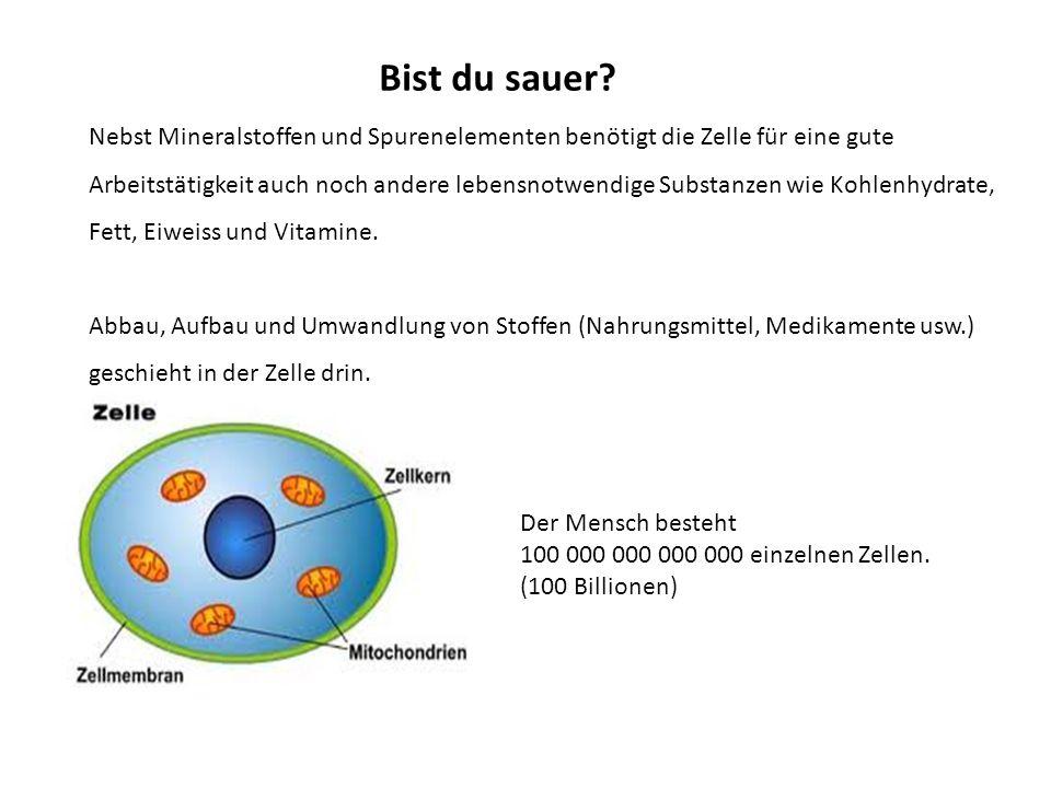 Arbeitet die Zelle gut, so werden die Schlacken (Stoffwechsel _ _ _ _ _ produkte sind SAUER) aus der Zelle hinausbefördert und abtransportiert.