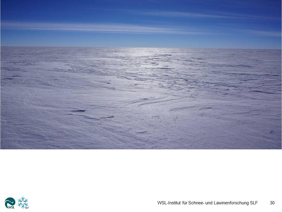 WSL-Institut für Schnee- und Lawinenforschung SLF31