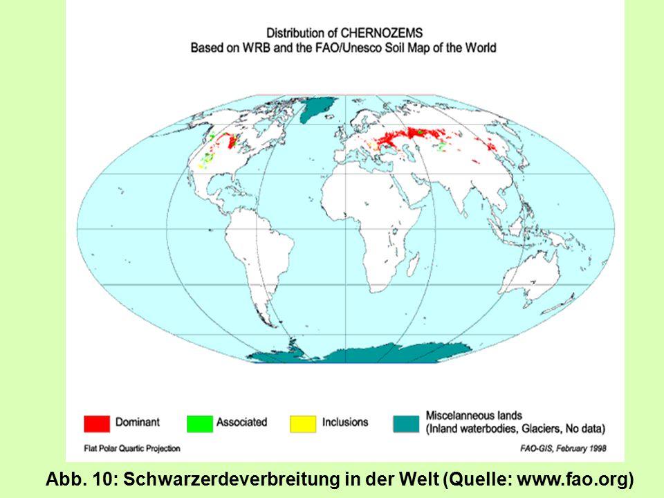 Lage des Profils Versuchsstation Bad Lauchstädt des UFZ-Umweltforschungszentrums Leipzig-Halle GmbH, nahe der Wetterstation Geographische und topographische Angaben Landschaftseinheit: Querfurter Platte Höhe über NN: 118 m Relief: ebene Platte; Neigung: 0° Versuchsstation befindet sich am Stadtrand von Bad Lauchstädt; 51°23 nördl.