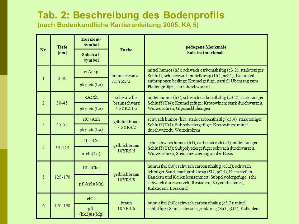 Abb. 11: Typische Schwarz- erde mit Krotowine in Bad Lauchstädt, südlich von Halle/Saale; Foto: UFZ