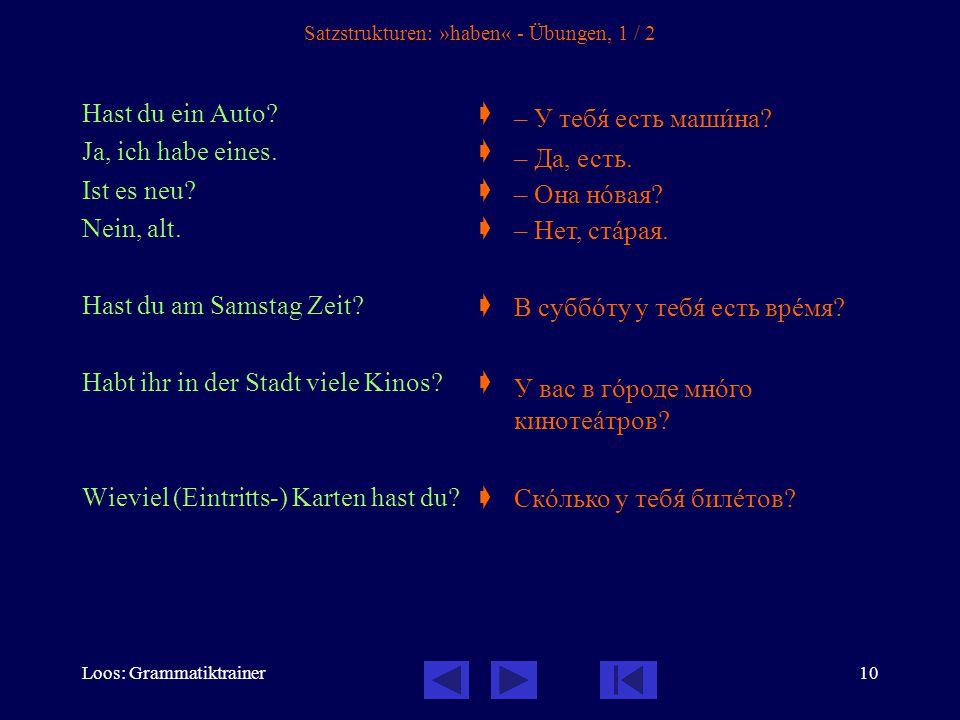 Loos: Grammatiktrainer11 Satzstrukturen: »haben« - Übungen, 2 / 2 Hast du Geschwister (= Brüder und Schwestern).
