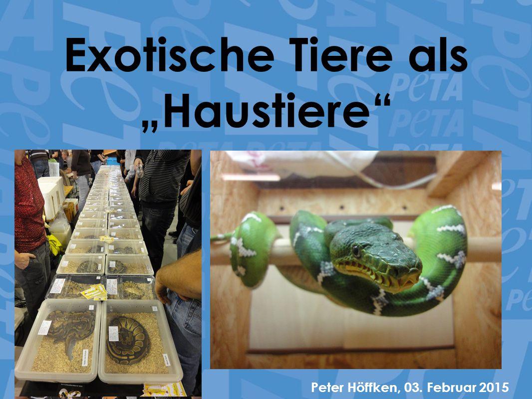 Fakten zur Exotenhaltung in Deutschland Etwa 800.000 Haushalte halten exotische Tiere wie Reptilien oder Amphibien (7 Mio.
