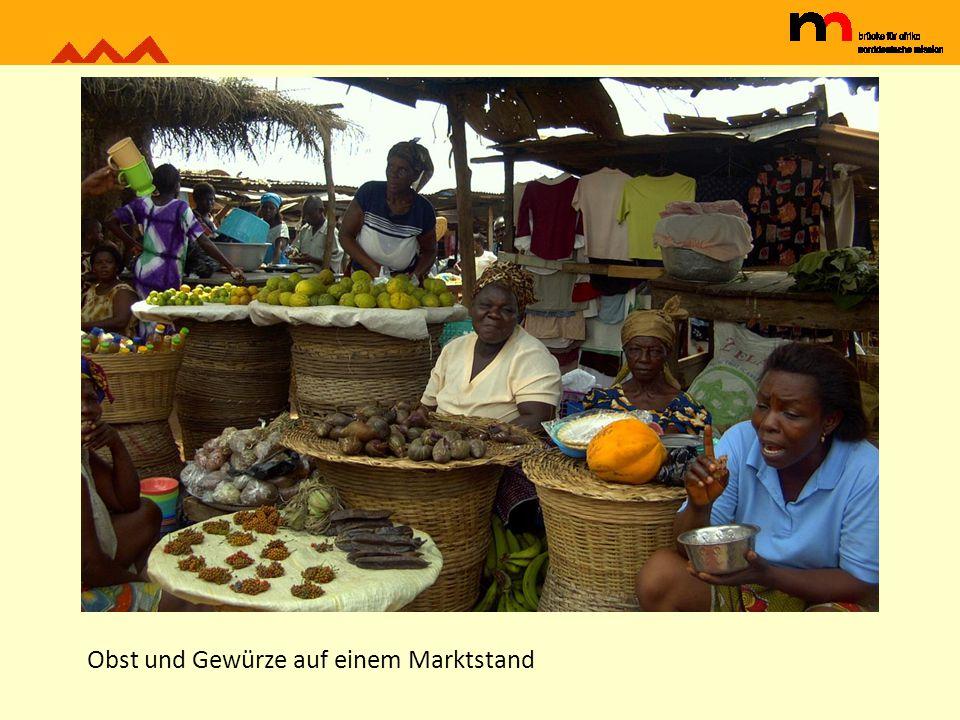 traditioneller mais-Speicher in Guerin Kouka im Norden Togos