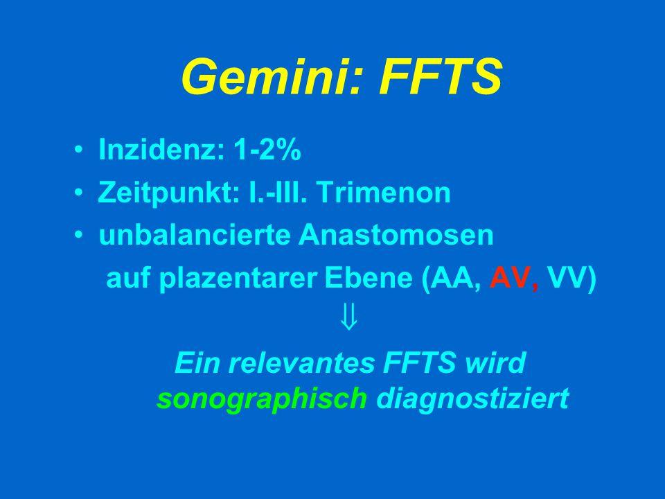 Gemini: FFTS DONOR SGA Oligohydramnion Leere Blase Path.