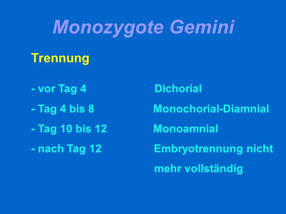 Chorion- und Amnionverhältnisse diamnial/dichorial diamnial/monochorialmonoamnial/monochorial