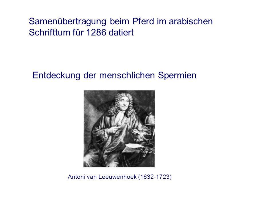 Erste erfolgreiche Besamung bei einem Säugetier im Jahre 1780 an einer Hündin Lazzaro Spallanzani (1729-1799) Karl-Ernst von Baer (1792-1876) Entdeckung der Eizelle 1827 bei einer Hündin Entwicklung einer künstlichen Vagina für Hunde 1914 durch einen italienischen Physiologen