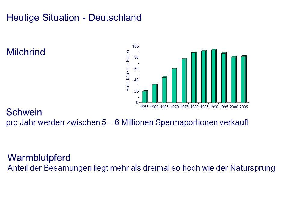 Schritte der Herstellung einer Besamungsportion - Spermagewinnung - Spermabeurteilung - Spermaverarbeitung - Verdünnung - Berechnung des Verdünnungsgrades - Verdünnungsvorgang - Konfektionierung u.