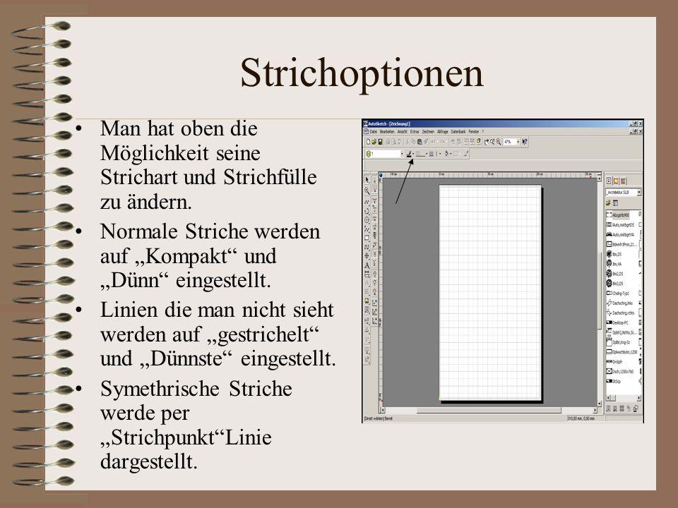 Linien und Fangoptionen Will man eine Linie zeichnen muss man links bei den Zeichenoptionen auf die Mehrfachlinie klicken.