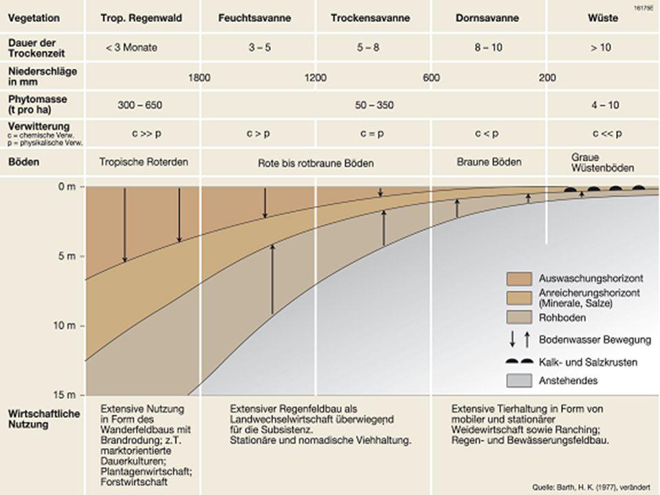 Feuchtsavanne 2½ bis 5 Monate Trockenzeit regengrüne, tropische Wälder, die in der Trockenzeit ihr Laub abwerfen Sträucher und niedrige Bäume, die das ganze Jahr über ihr Laub behalten (immergrün) breitblättriges, 2-5m hohes Elefantengras entlang der Flüsse Galeriewälder (extrazonale Vegetation, zum Teil immergrün