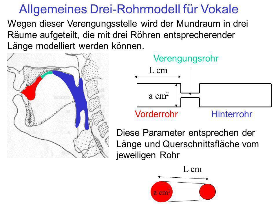 Beitrag der Röhre zur Akustik der Vokale Alle Röhre tragen zur Akustik/Formanten bei, diese Merkmale jedoch am meisten (in dieser Reihenfolge): 1.