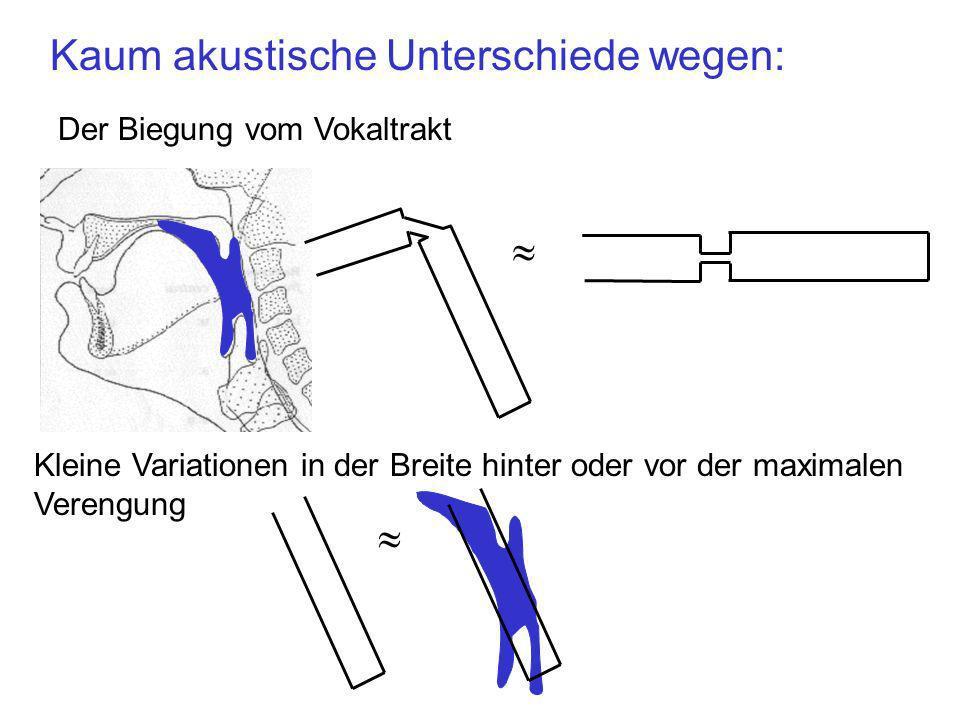 Drei-Rohr Modell: Festgelegte Parameter Lippen Glottis Vorderrohr Hinterrohr Lvg = 2 cm Verengungsrohr Verengungsrohr-Länge Lvg = 2 cm Ah = 4 cm 2 Hinterrohr-Querschnittsfläche = 4 cm 2 L = 16.5 cm Vokaltraktlänge, L = 16.5 cm Avg = 0.1 cm 2 Verengungsrohr-Querschnittsfläche Avg = 0.1 cm 2