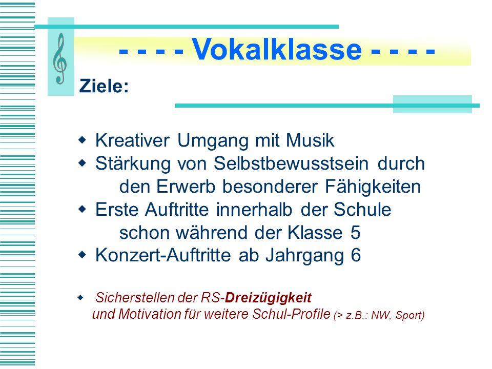 Zwei Klassenlehrer in den Jahrgängen 5 u.6, darunter ein Musiklehrer (ggf.