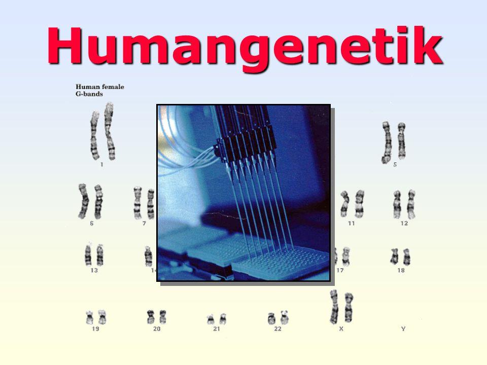 Weller 2004 Humangenetik 2 Grundfragestellungen Aufgaben : Aufklärung der Vererbungs-Gesetzmäßigkeiten beim Menschen auf der Ebene der Merkmale, der Genprodukte, der Chromosomen und der Nucleinsäuren.