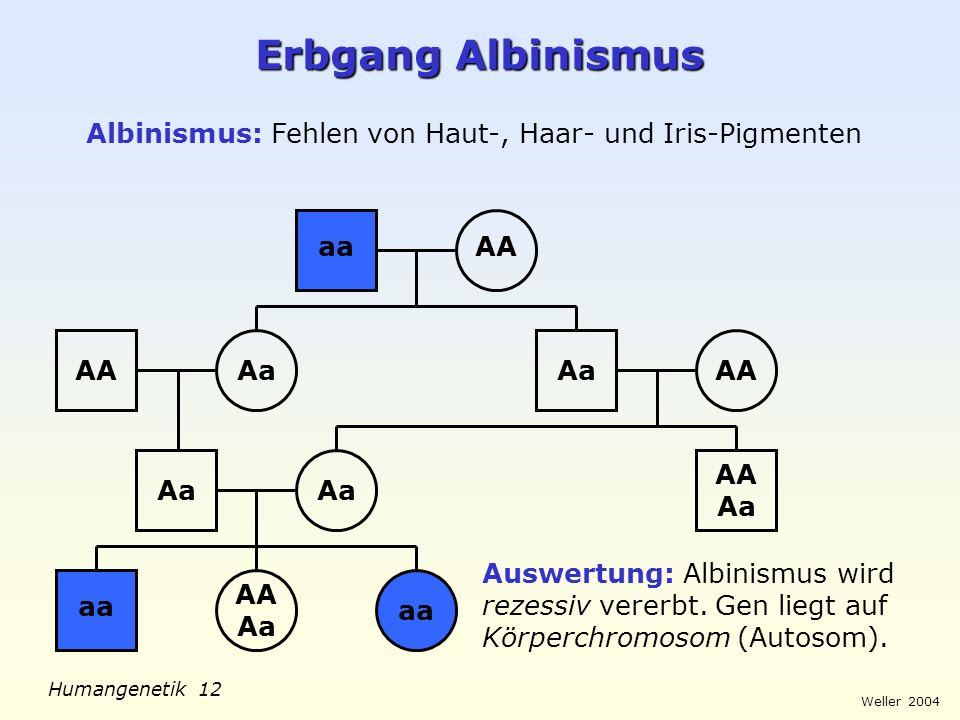Weller 2004 Humangenetik 13 Erbgang Kurzfingrigkeit Kurzfingrigkeit: Verkürzte Mittelhand- bzw.