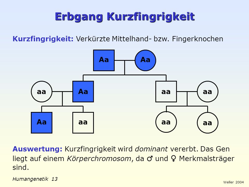 Weller 2004 Humangenetik 14 Farbtest Rot-Grün-Schwäche